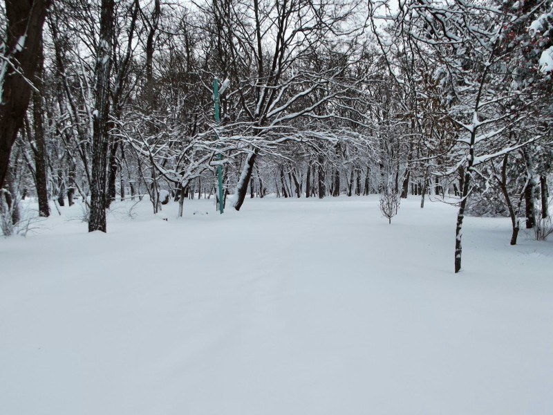 winter037