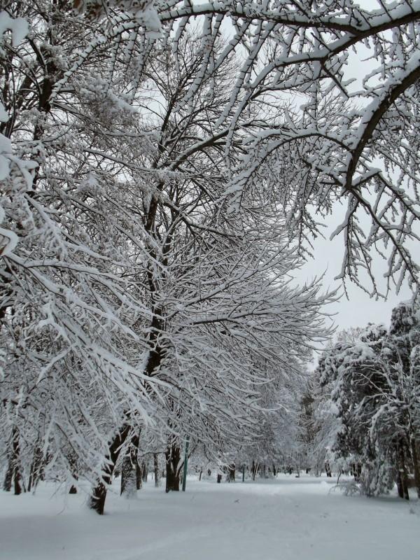 winter057