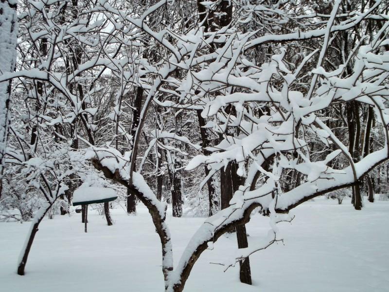 winter065
