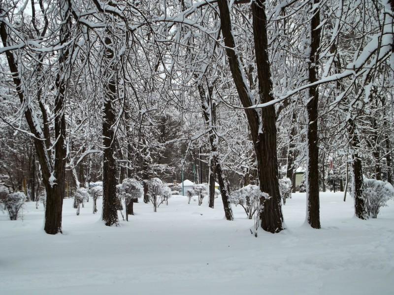 winter067