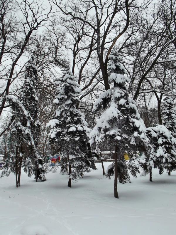 winter093
