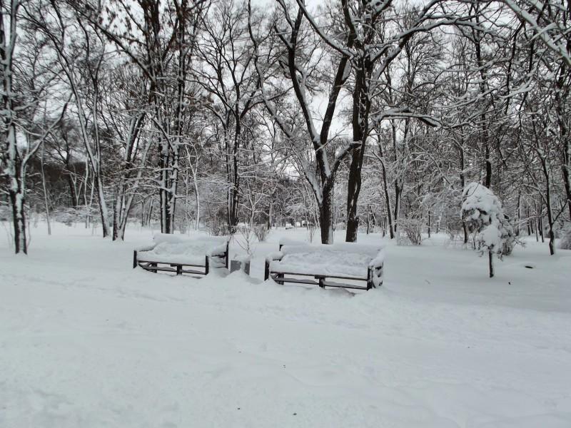 winter096