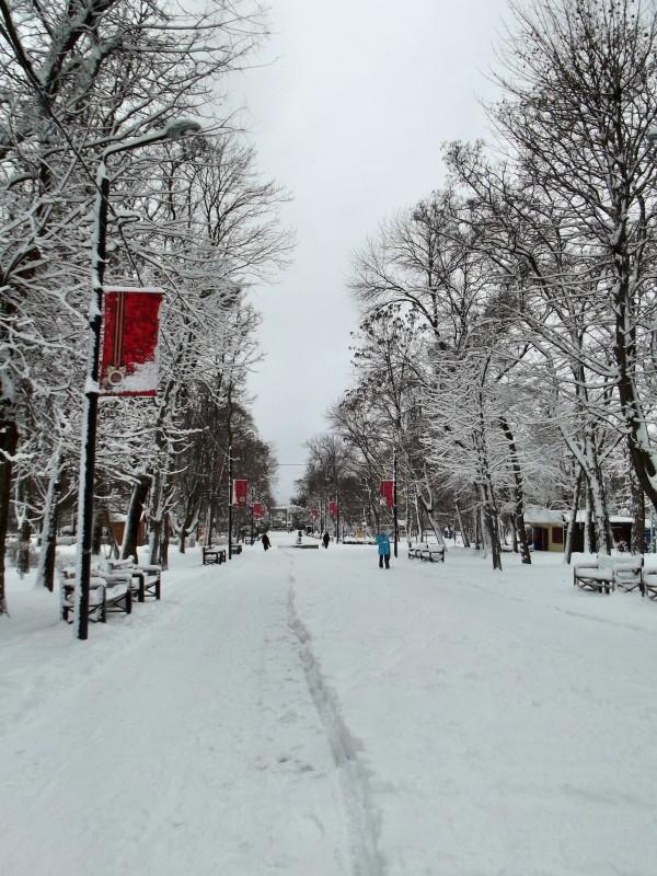 winter097