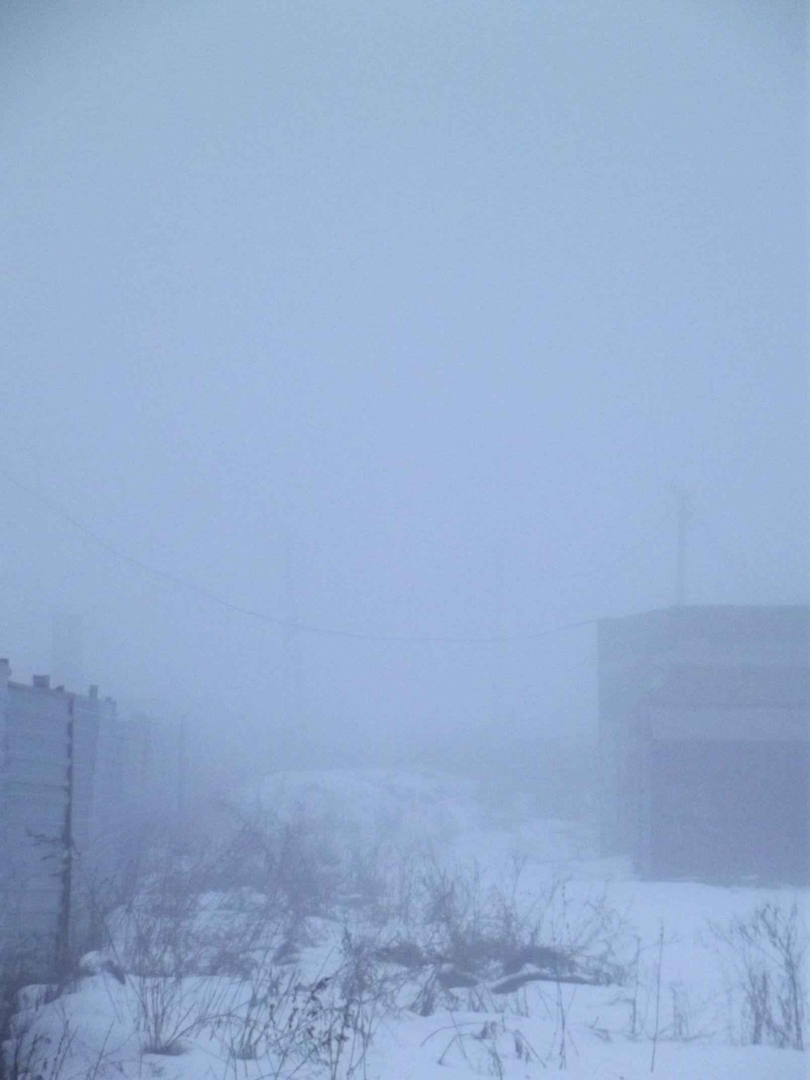 smog019