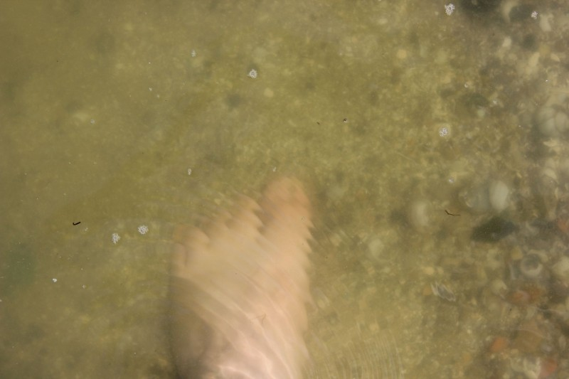 seaside024